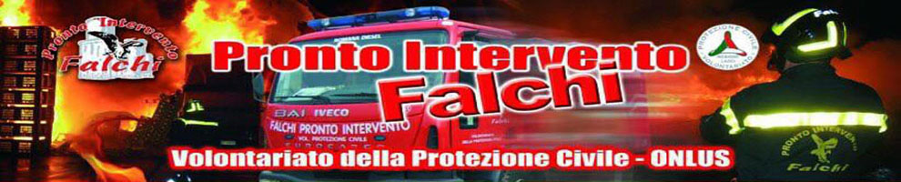 Falchi Pronto Intervento